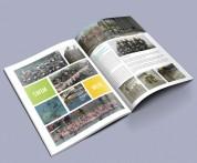Yearbooks Yearbook Design